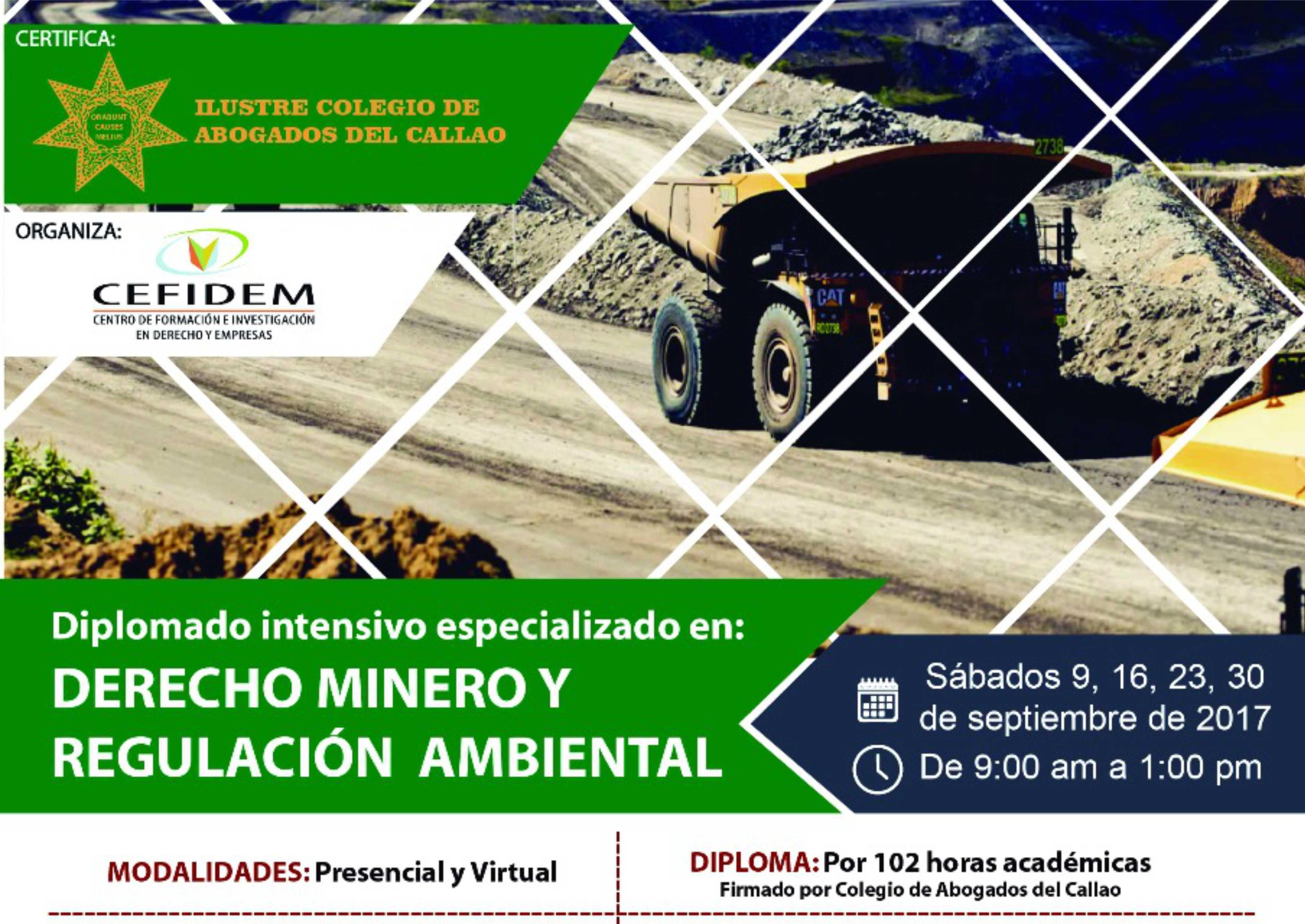 DIPLOMADO EN DERECHO MINERO Y REGULACIÓN AMBIENTAL (presencial y virtual)